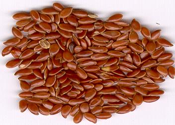recipe: linseed meaning in gujarati [13]